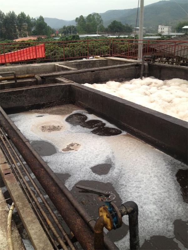 惠州齐福养猪场污水处理
